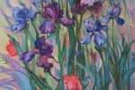 Spring Beauties (Iris)